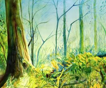 Enchanted Woods Painting, 20 H x 24 W x 0.1 in Aumara Issel United States